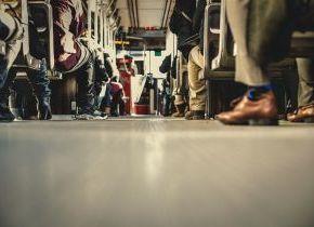 Nueva línea de autobús Segovia-AVE-Palazuelos-La Granja