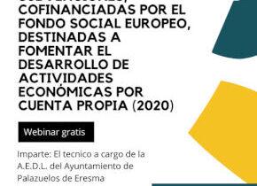 Todo lo que tienes que saber de la ayuda al autoempleo de la JCYL 2020 - Webinar de la A.E.D.L.