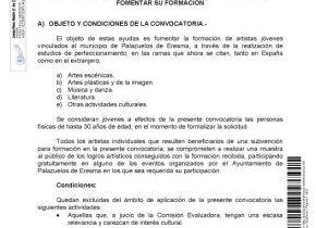 BASES REGULADORAS DE CONVOCATORIA PÚBLICA PARA LA CONCESIÓN DE SUBVENCIONES A ARTISTAS INDIVIDUALES JÓVENES DIRIGIDAS A FOMENTAR SU FORMACIÓN